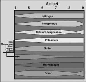 Nutrient availability compared to pH levels